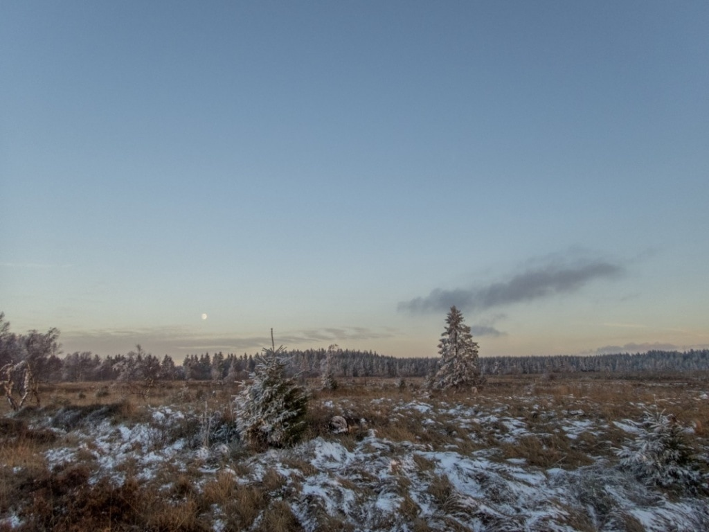 Wanderung: Venngucker - Natur am Nachmittag