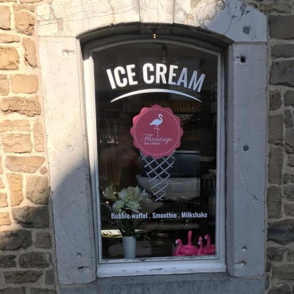 Flamingo Ice Cream