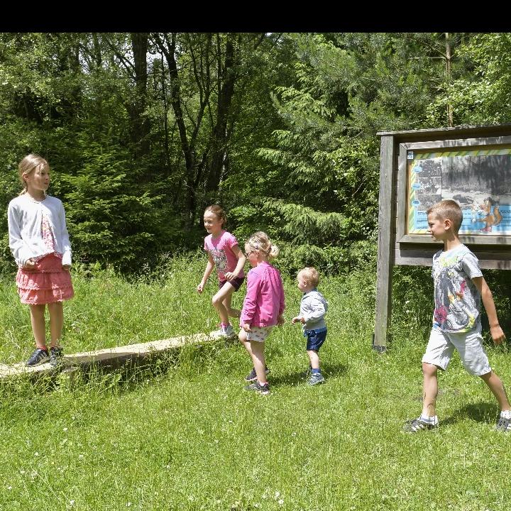 Foxy - Le parcours forestier du barrage à Eupen